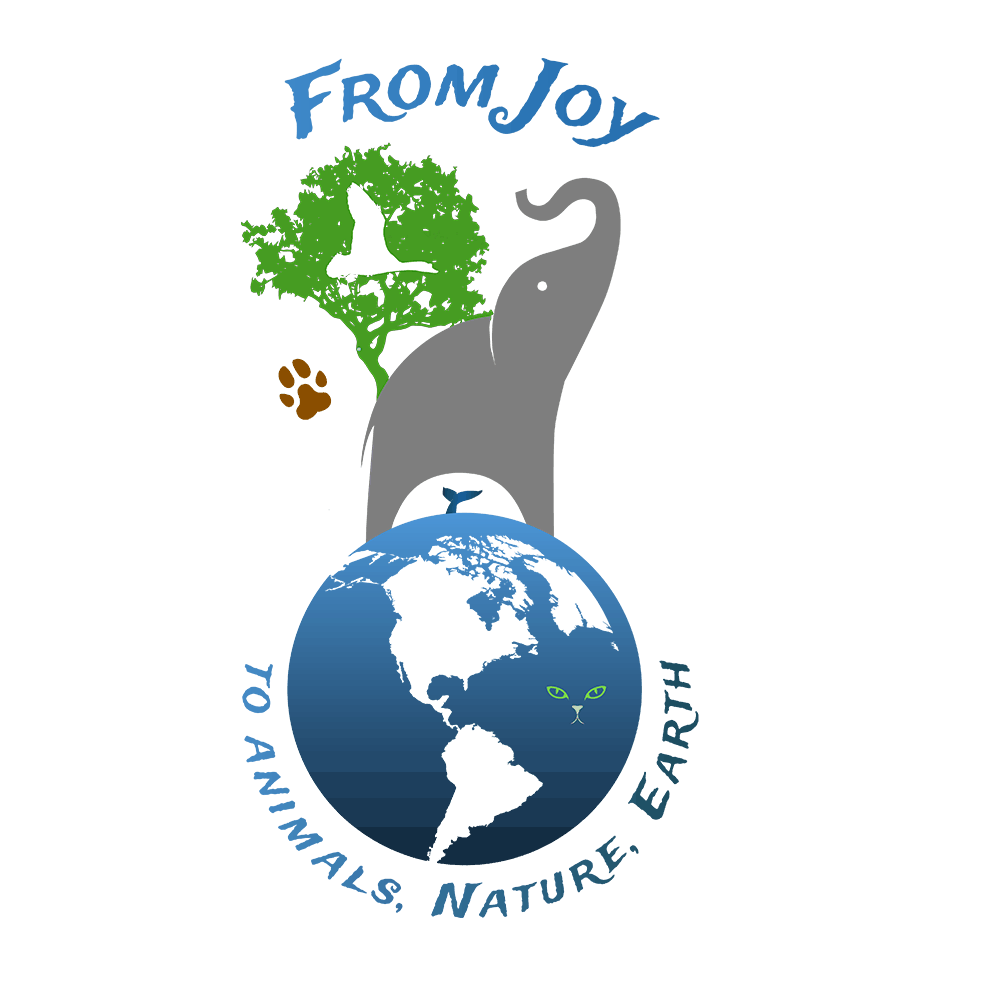logo F.J.A.N.E.