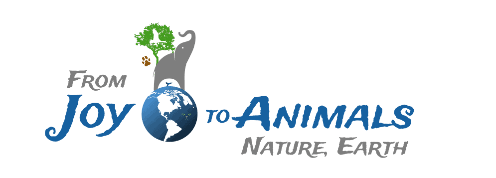From Joy to Animals, Nature, Earth - F.J.A.N.E. -